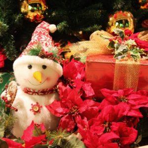 サボンクリスマスコフレ